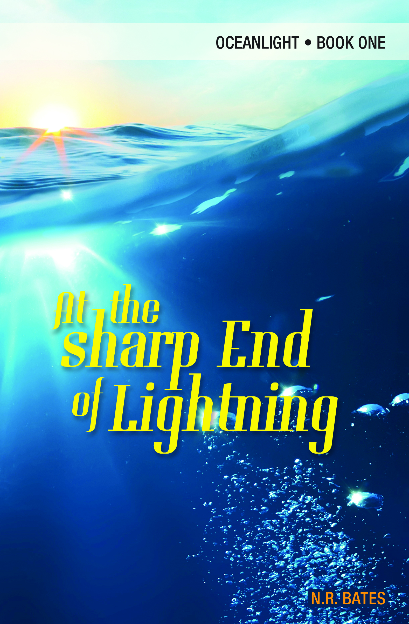At the Sharp End of Lightning by NR BatesPremier Virtual Author Book Tours