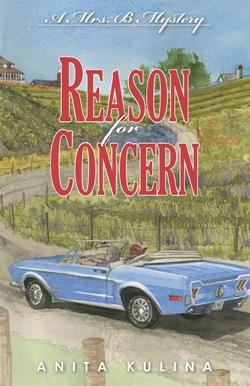 Reason for Concern: Mrs. B Mystery by Anita Kulina